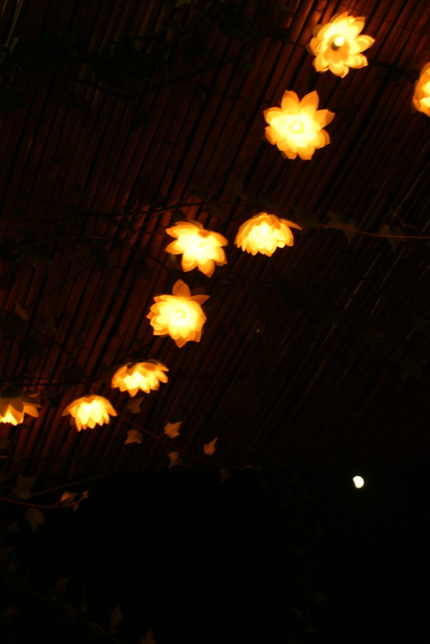 Llums terrassa